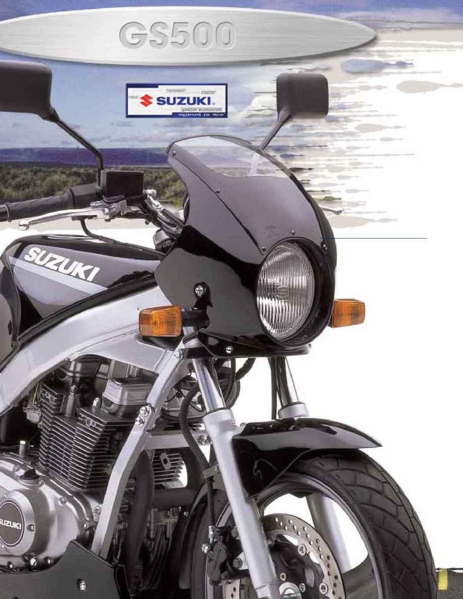 Suzuki - 2002 gs 500